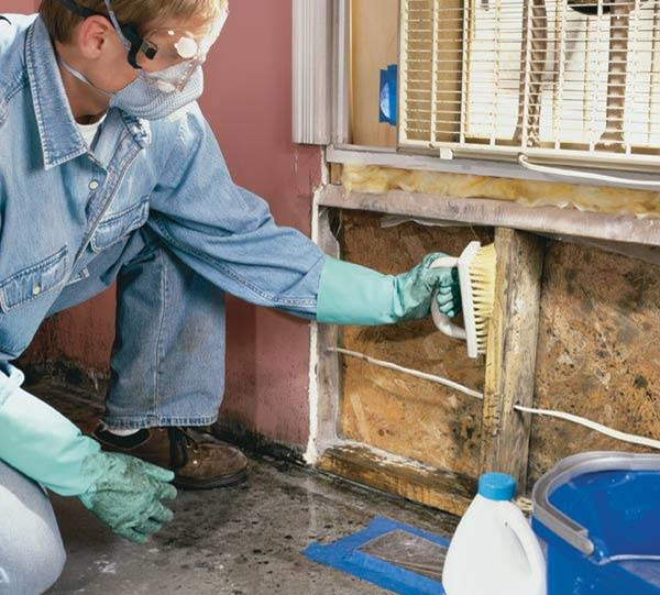 Could Climate Change Increase the Risk of Mold in Housing?
